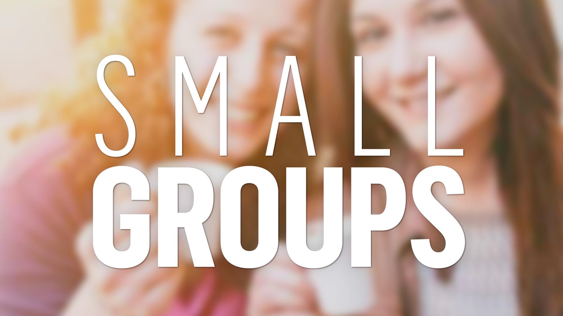 111_81-Smallgroups